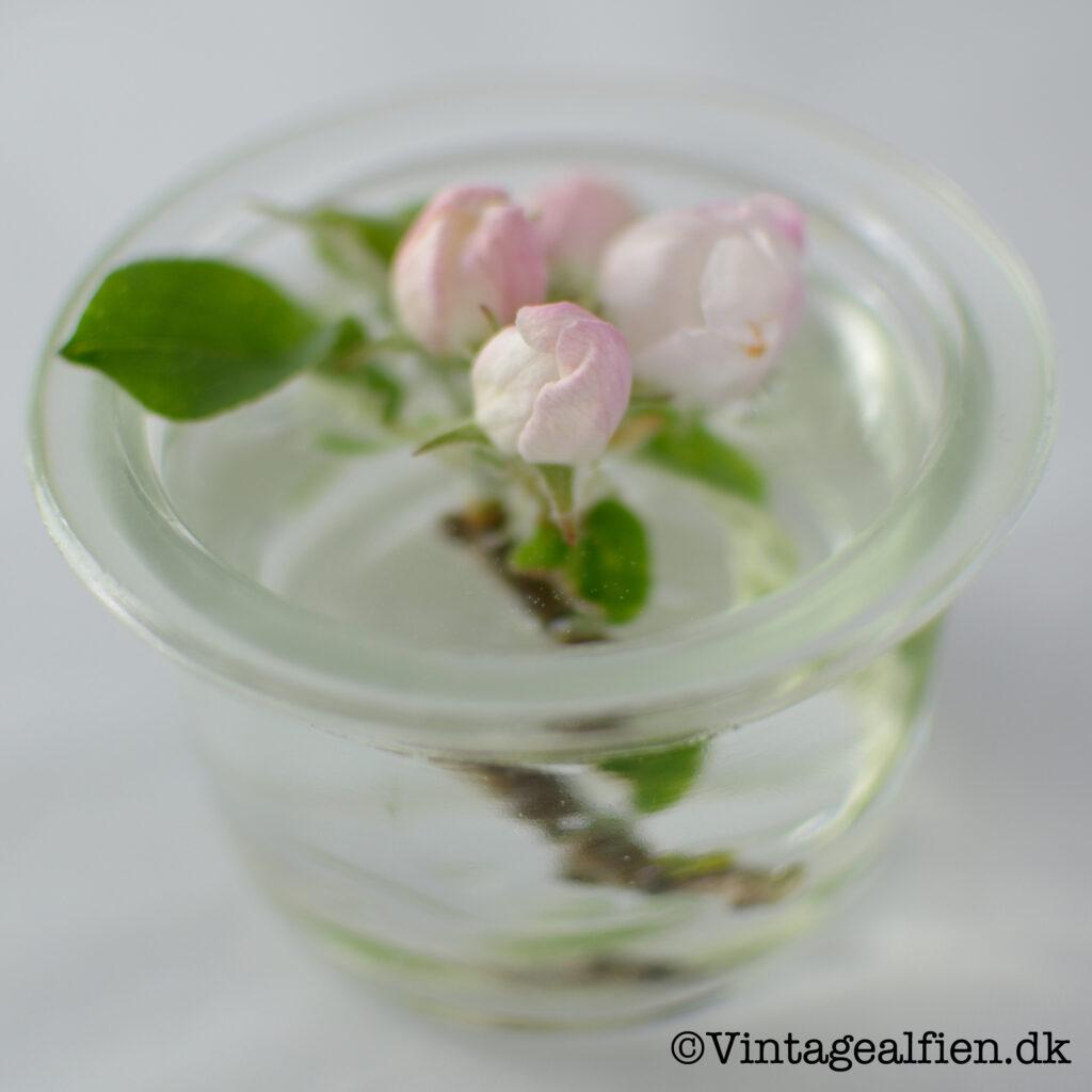 Strikkeudfordring: Æbleblomst fra Alfiens have i en lille glasskål fra Kastrup glasværk
