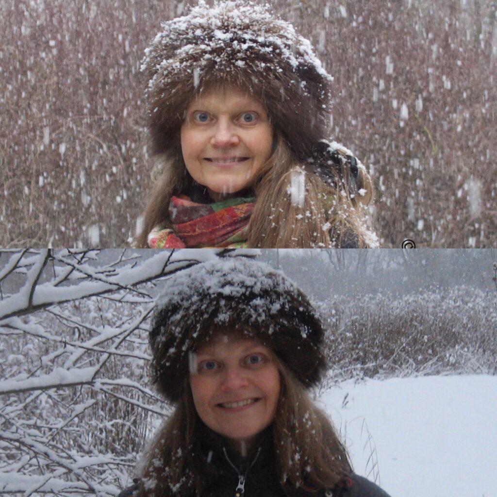 Alfien på en snevejrsdag